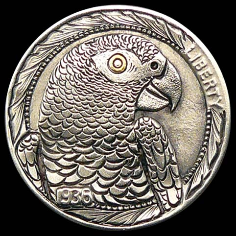 Hobo Nickel Engraved With A Grey Parrot